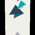 Prism longboards Insight