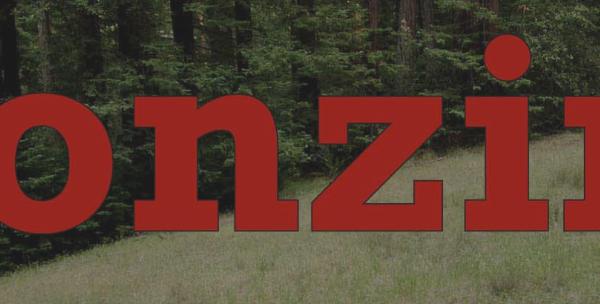 Bonzing Skateboards Logo