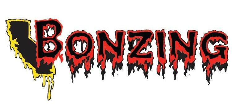 Photo of Bonzing Skateboards Logo
